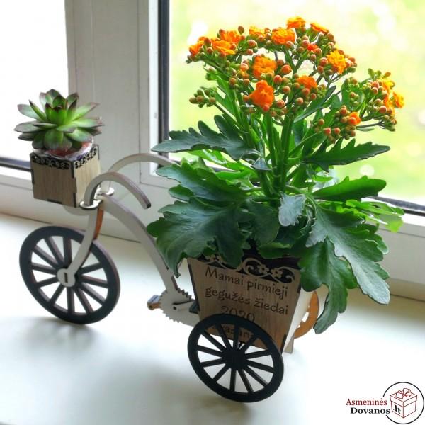 """Gėlės vazono dekoracija - """"Gegužė"""""""