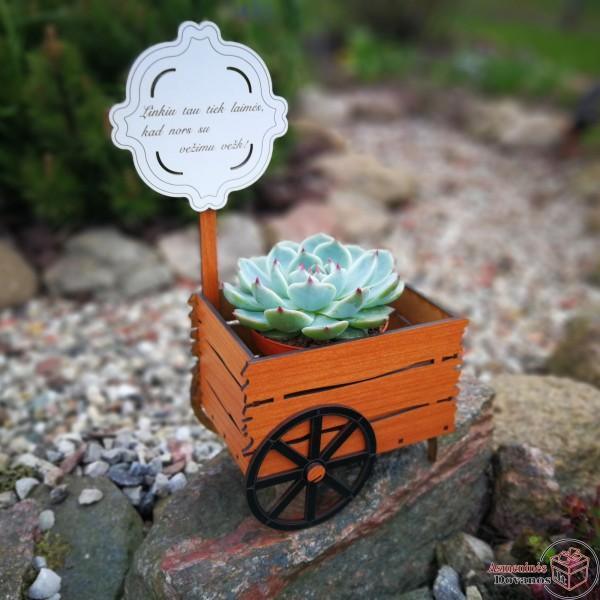 """Gėlės vazono dekoracija - """"Vežimas"""""""